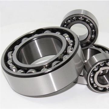 INA NX10 Complex Bearing